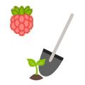 Благоприятное время для посадки ягод