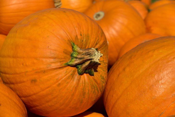 Лунный календарь садовода - Октябрь