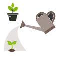 Полив растений, в том числе и комнатных