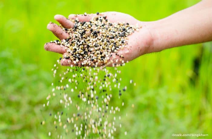 Что такое минеральные удобрения и для чего они нужны