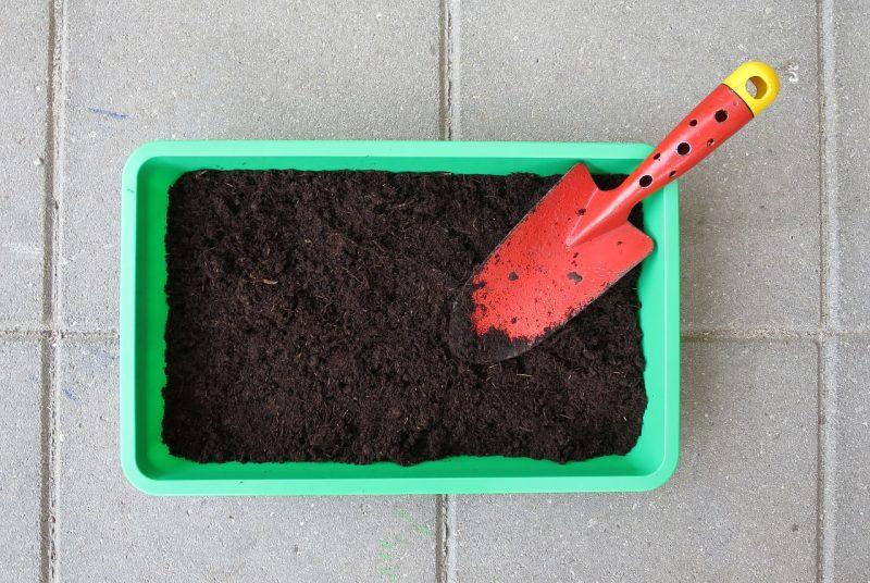 Какие из овощей можно сажать под зиму